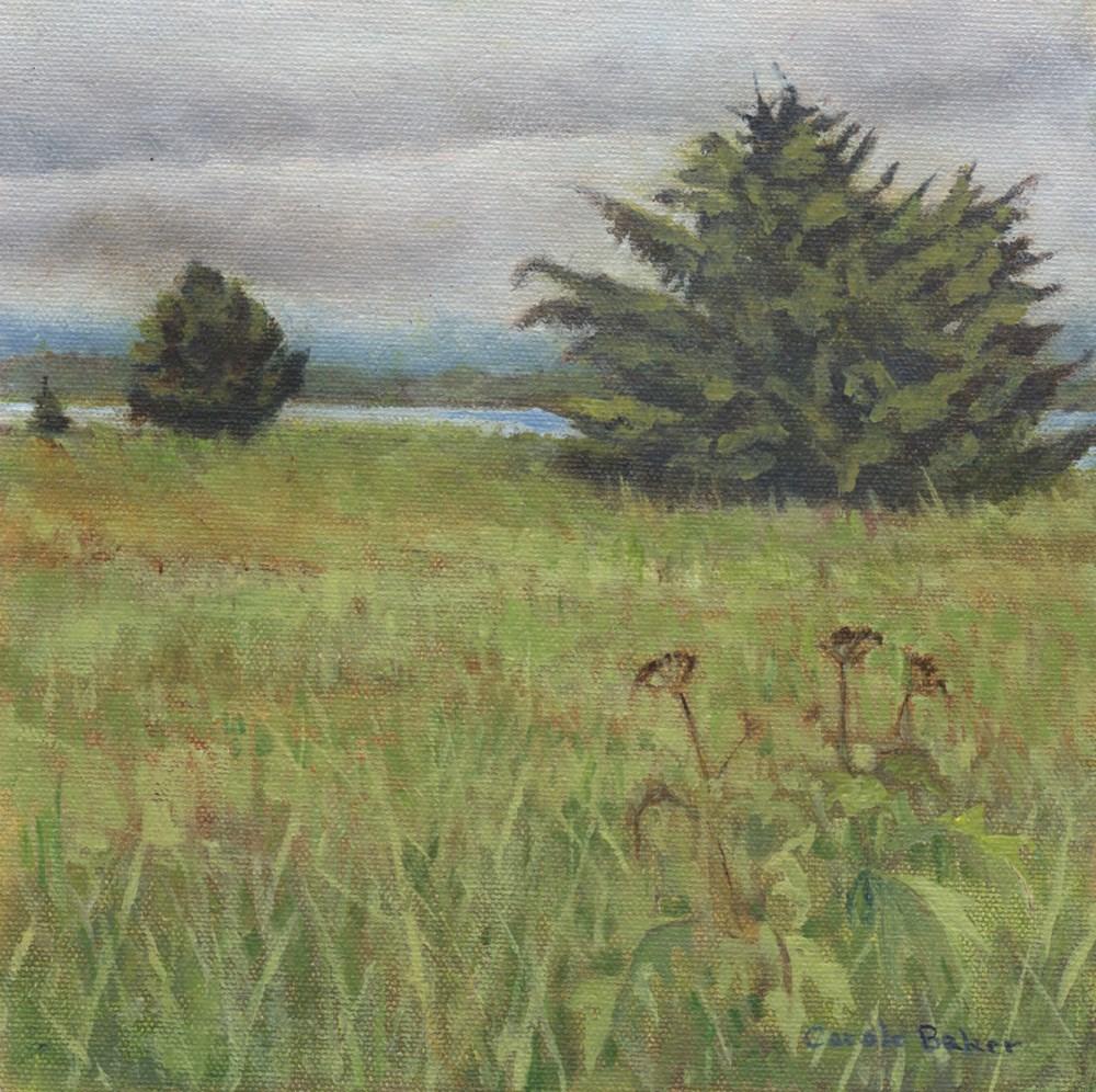"""Beach Trees"" original fine art by Carole Baker"
