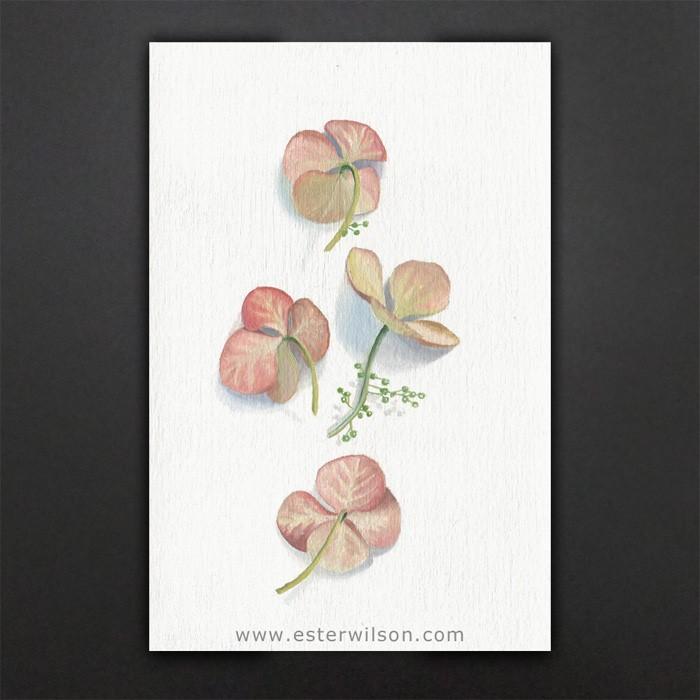 """Sweet Petals"" original fine art by Ester Wilson"