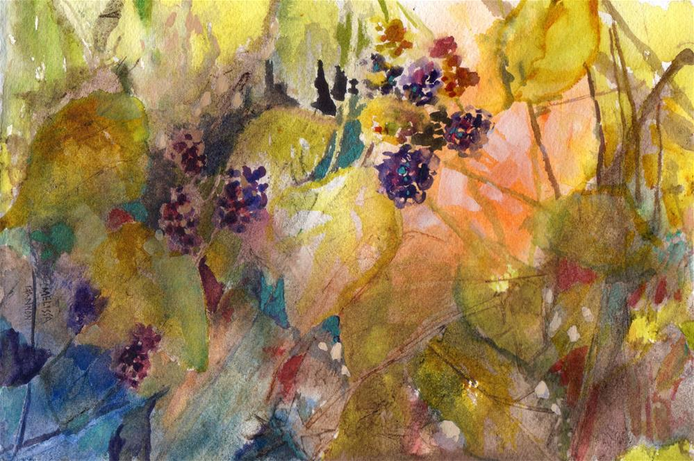 """Sunlight on Blackberries"" original fine art by Melissa Gannon"