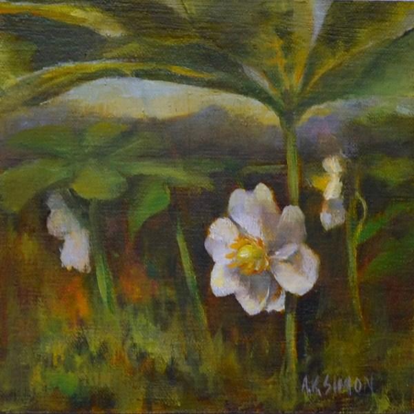 """May Apple"" original fine art by A.K. Simon"