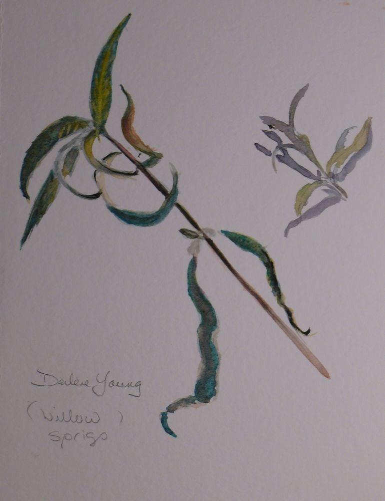 """578 Willow Sprigs"" original fine art by Darlene Young"