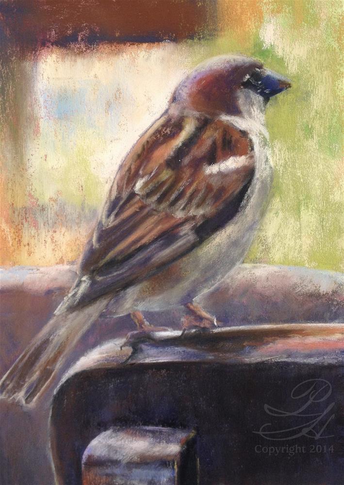 """Little Bird"" original fine art by Pamela Hamilton"