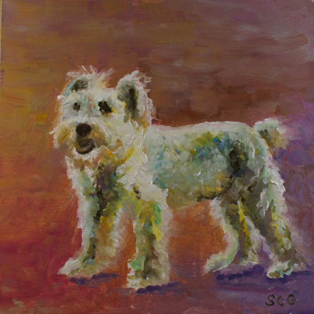 """""""Scottie"""" original fine art by Sue Churchgrant"""