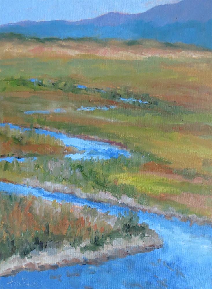 """Meandering River"" original fine art by Pam Holnback"