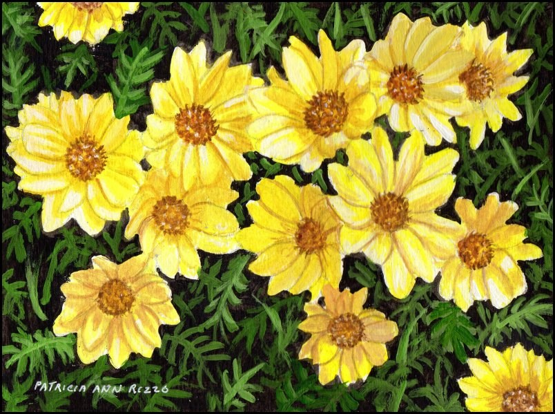 """Pretty Yellow Daisies"" original fine art by Patricia Ann Rizzo"