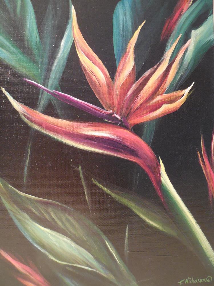 """Bird of Paradise"" original fine art by Terri Nicholson"