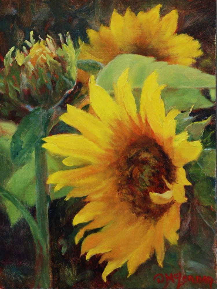 """Field of Sun"" original fine art by Dorothy McLennan"