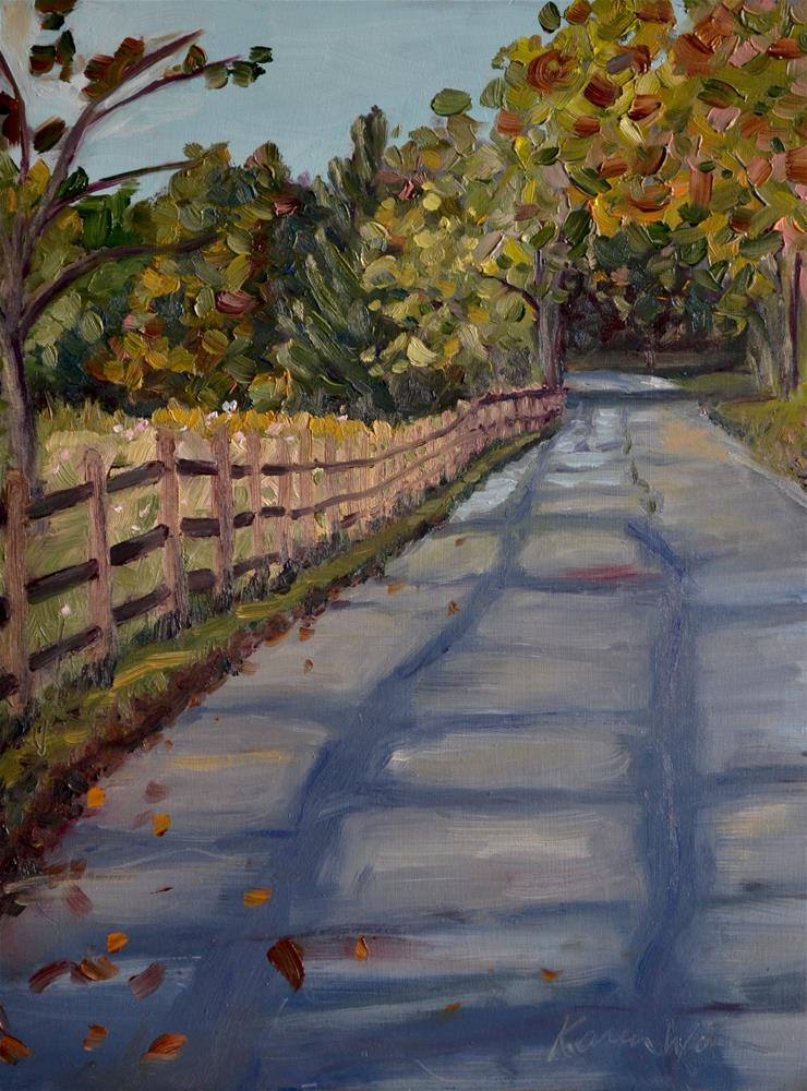 """Shadows on the road"" original fine art by Karen Weber"