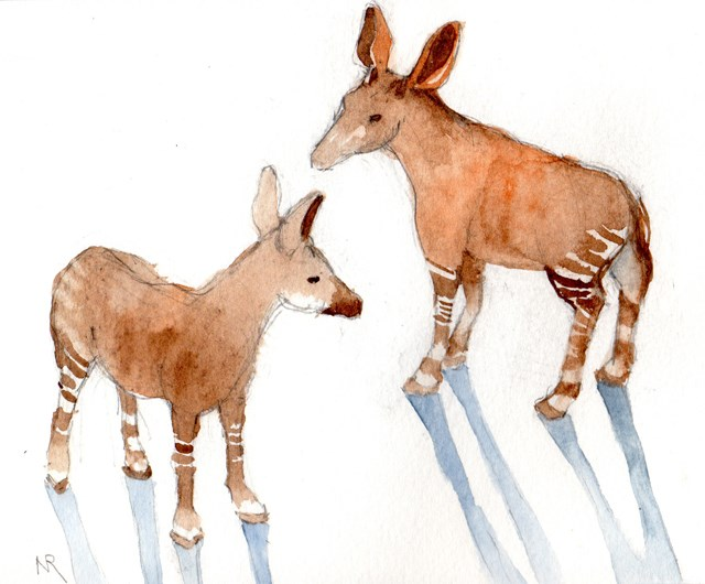 """Okapis"" original fine art by Nancy Roberts"
