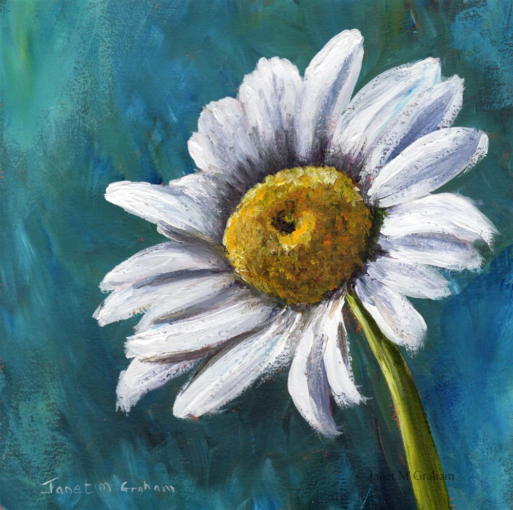 """Daisy"" original fine art by Janet Graham"