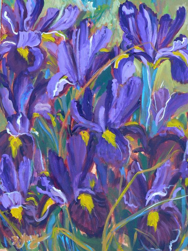"""Irises"" original fine art by Darlene Young"