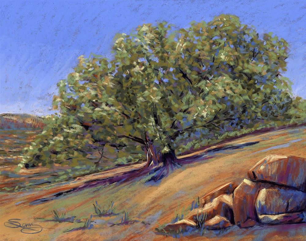 """""""Pinion Tree"""" original fine art by Valorie Sams"""