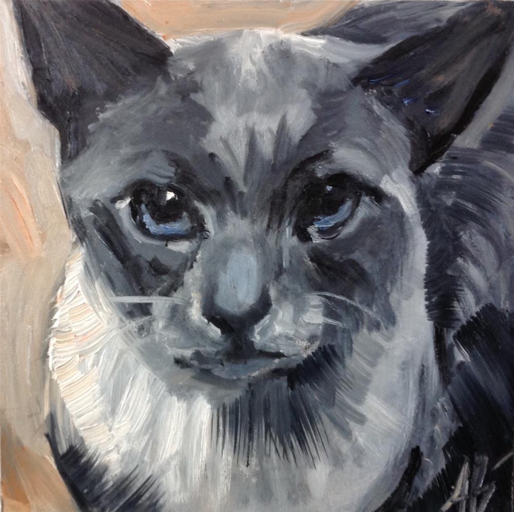 """""""Feline in shade Gray"""" original fine art by Annette Balesteri"""