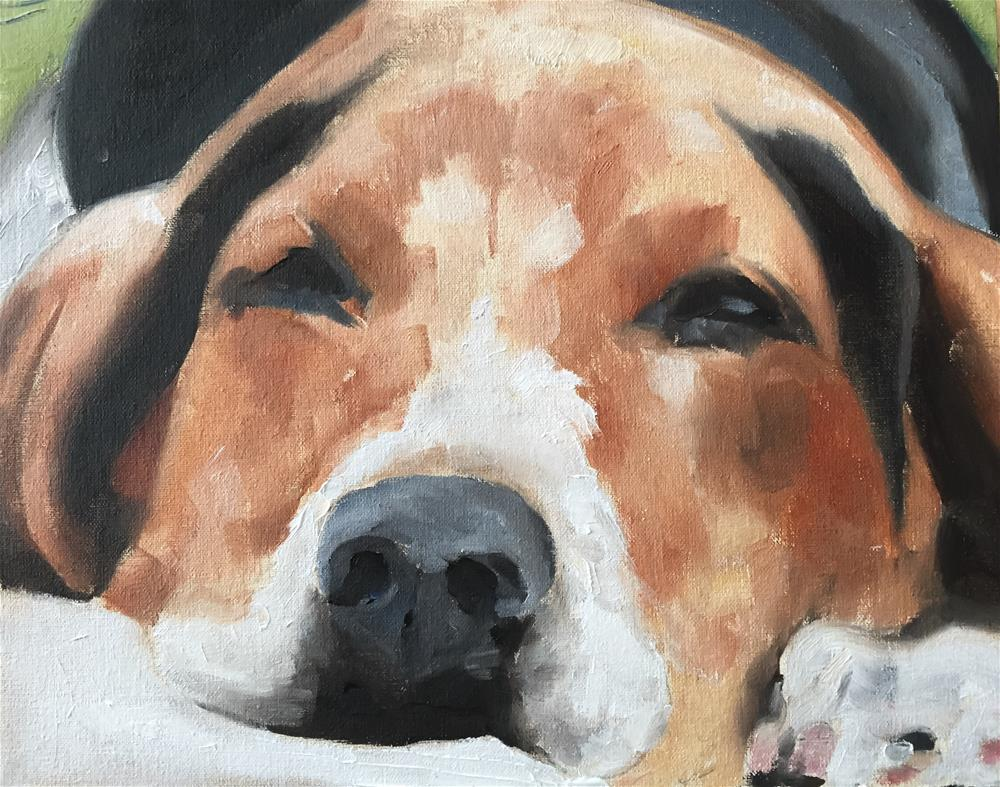 """Sleepy Dog"" original fine art by James Coates"