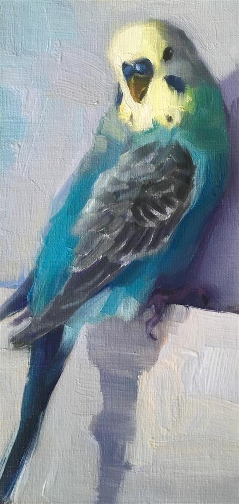 """Budgie62_oil"" original fine art by Katya Minkina"