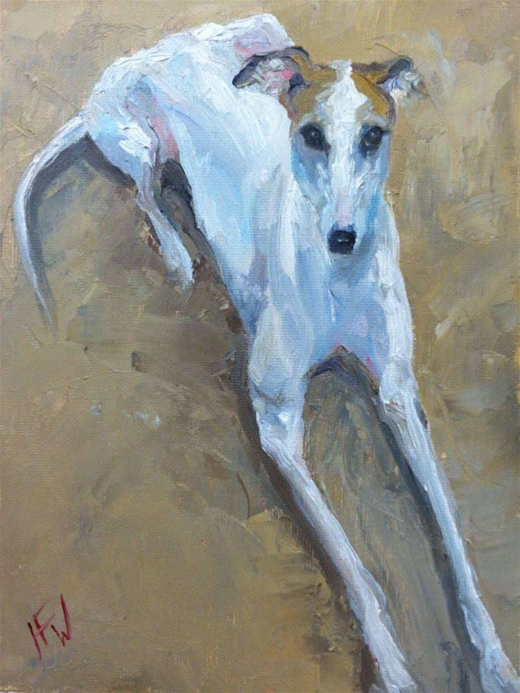 """""""Italian Greyhound"""" original fine art by H.F. Wallen"""