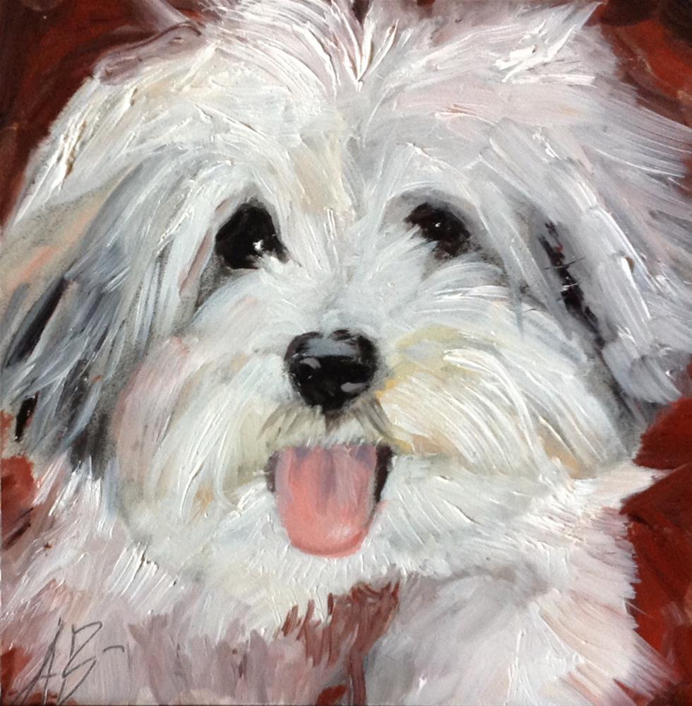 """""""A Havanese Puppy"""" original fine art by Annette Balesteri"""