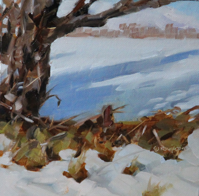 """""""A Challenged Landscape-In New Zealand"""" original fine art by C J Roughton"""