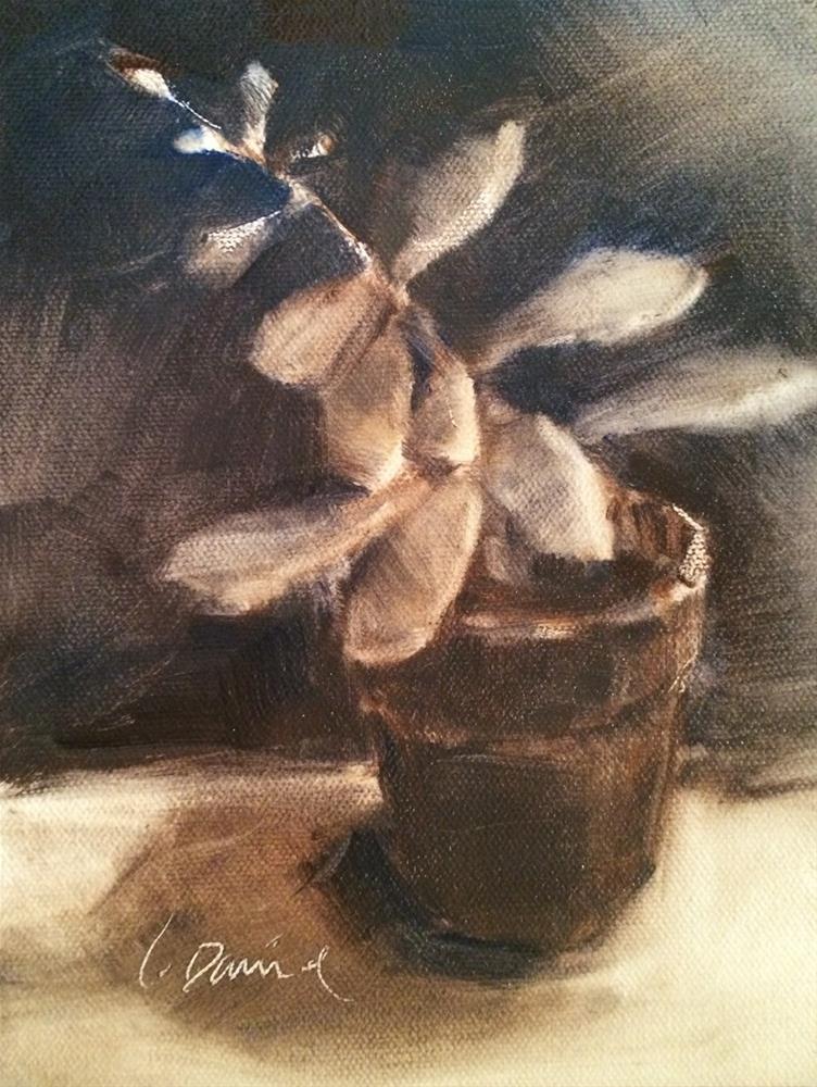 """""""Succulent Sketch - Eighteen of 30 in 30"""" original fine art by Laurel Daniel"""