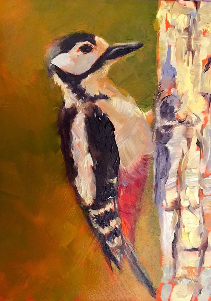 """""""Great Spotted Woodpecker"""" original fine art by June Rollins"""