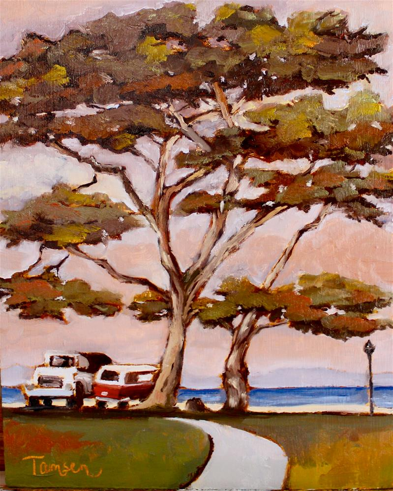 """""""Cypress at Lover's Point"""" original fine art by Tamsen Armstrong"""
