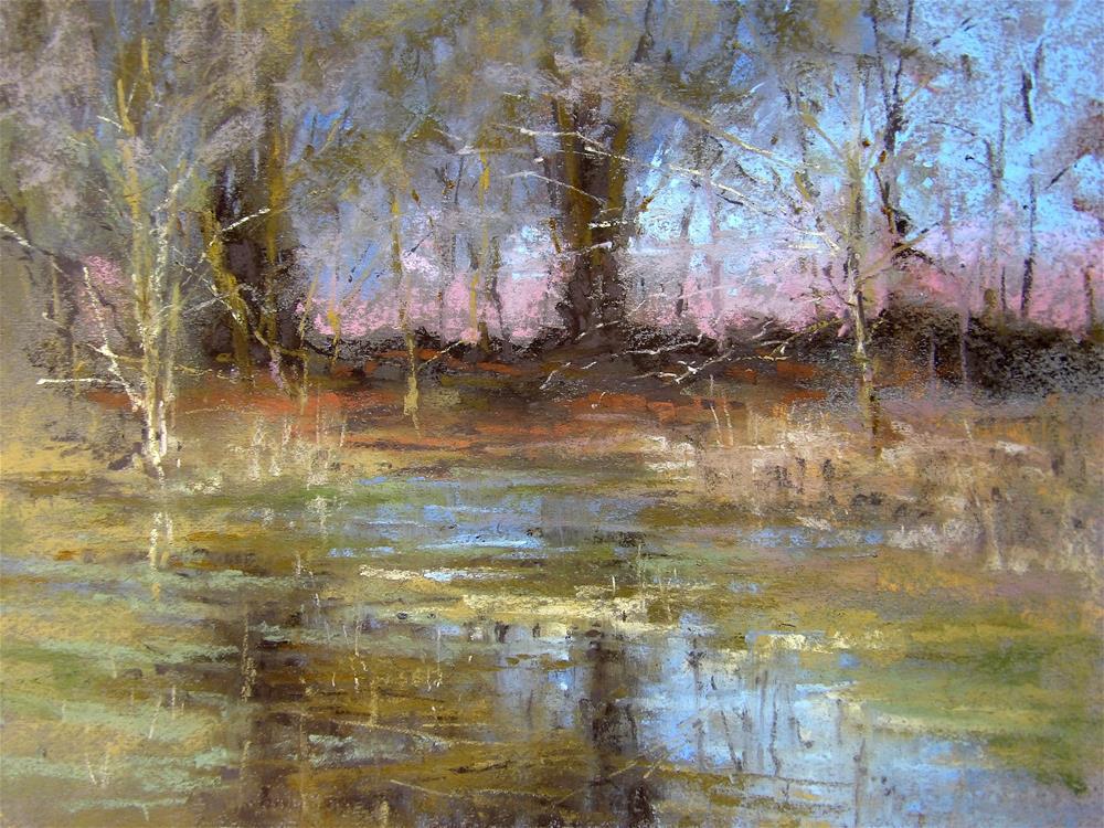 """Flooded Field"" original fine art by Alan Chaney"