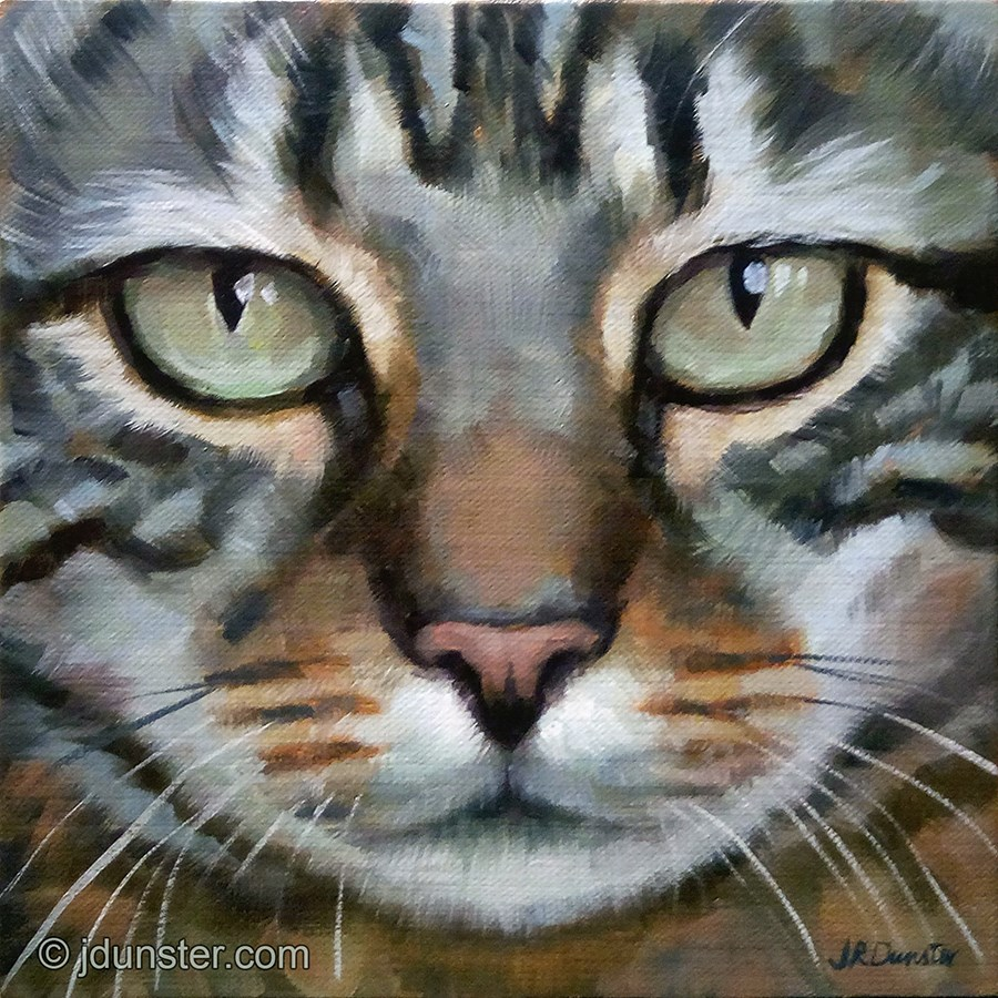 """Close-up Green-Eyed Tabby"" original fine art by J. Dunster"
