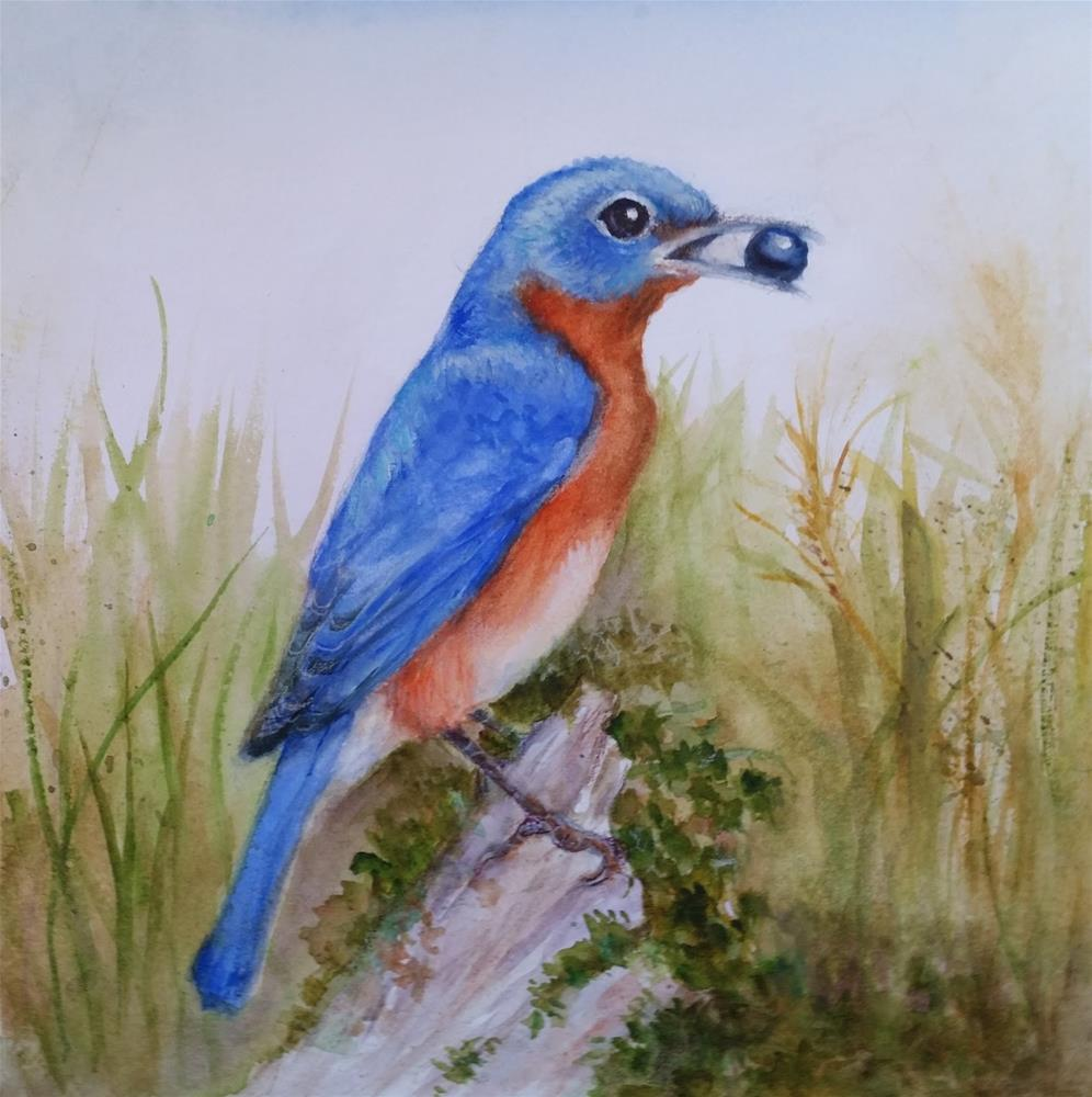 """Eastern Bluebird"" original fine art by Wendy Starita"