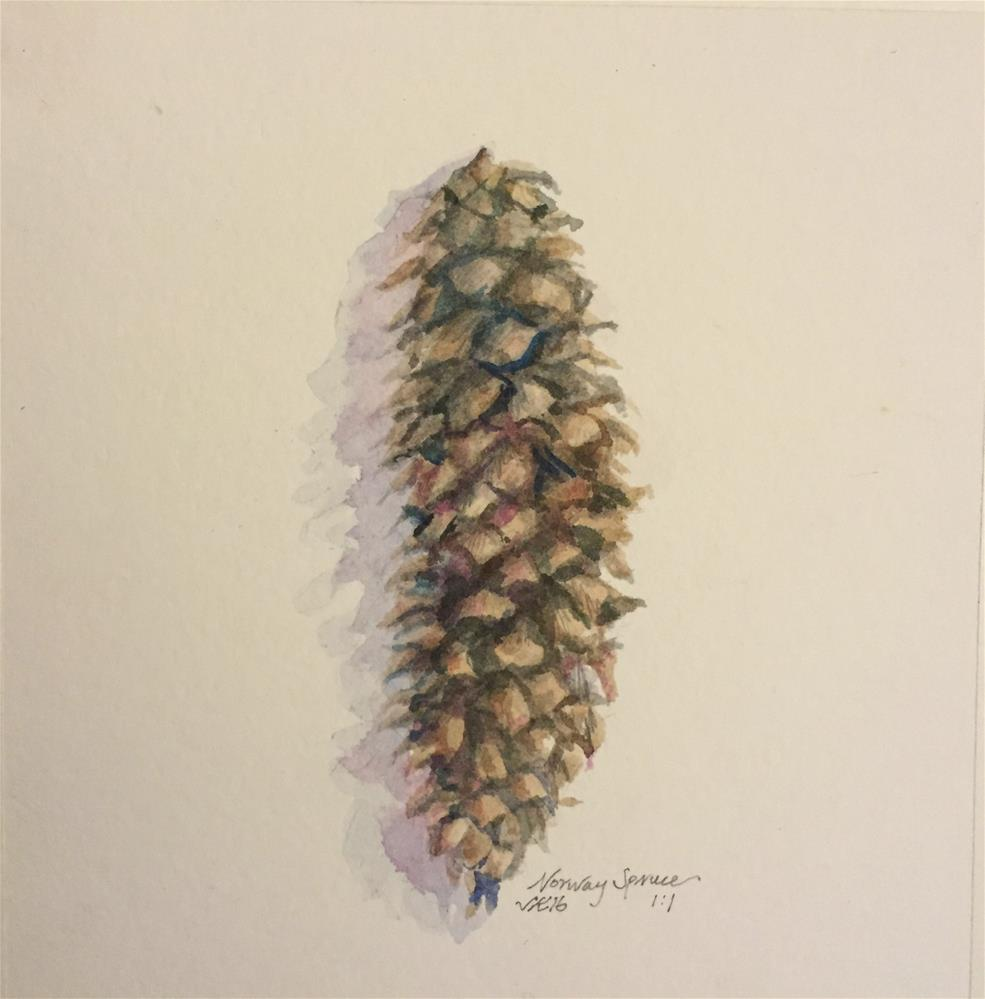 """Norway Spruce"" original fine art by Jean Krueger"