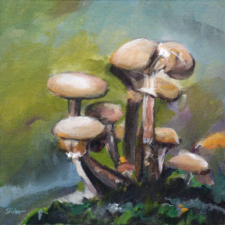 """2258 Mushies"" original fine art by Dietmar Stiller"
