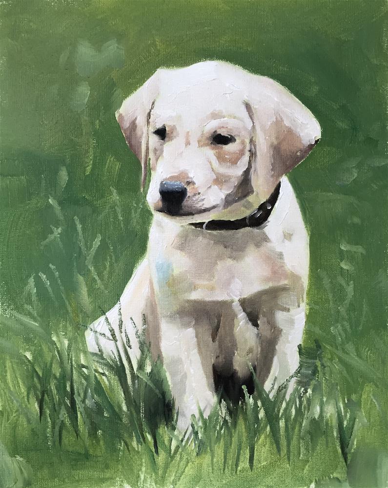 """Puppy"" original fine art by James Coates"