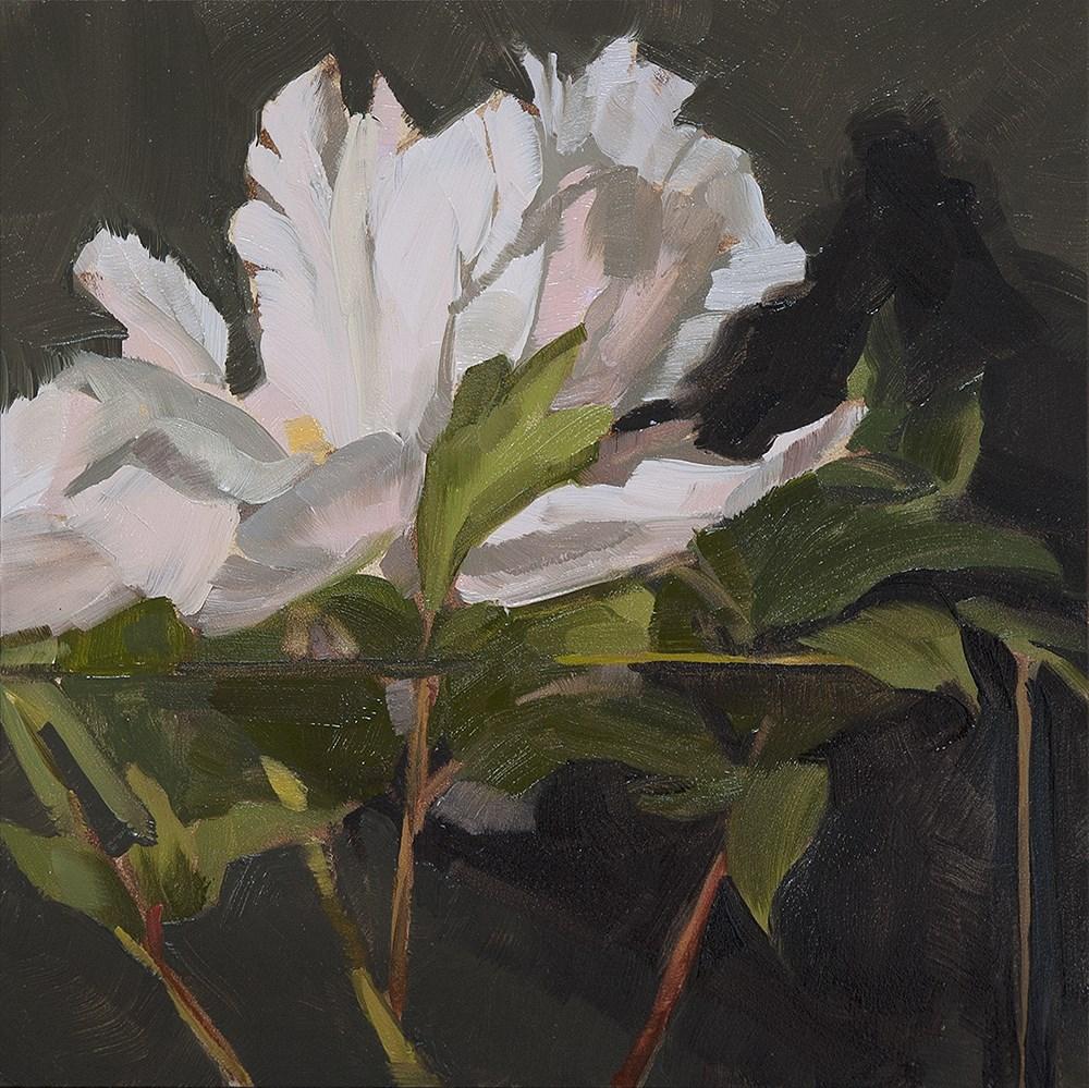 """Peony II"" original fine art by Miriam Hill"