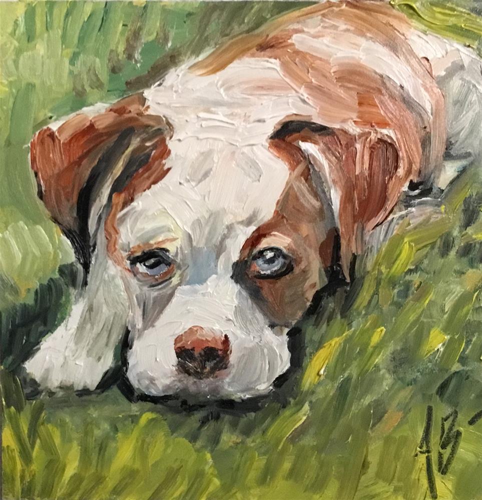 """American Bull dog on grass"" original fine art by Annette Balesteri"
