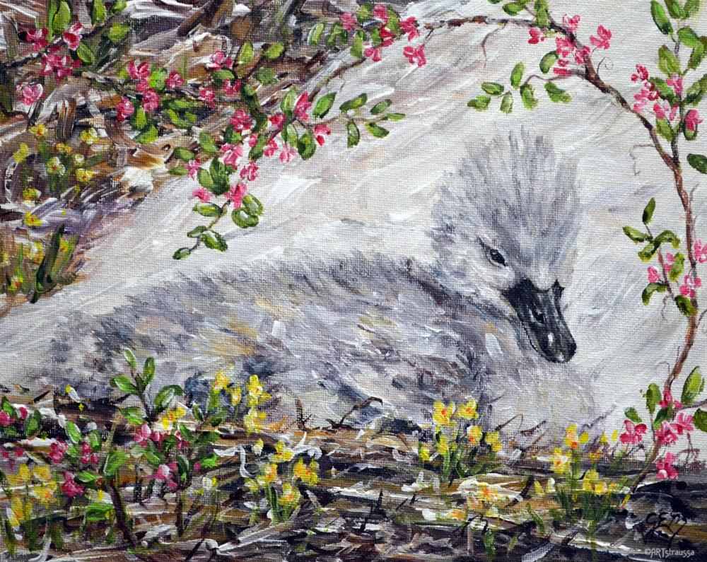 """Cygnet Spring"" original fine art by Gloria Ester"