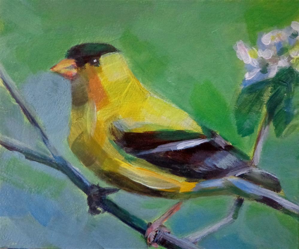 """Goldfinch"" original fine art by Maria Z."