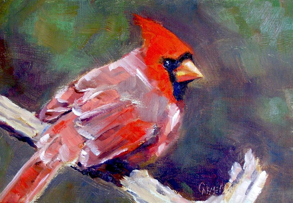 """Young Cardinal, 5x7 Oil on Canvas Board"" original fine art by Carmen Beecher"