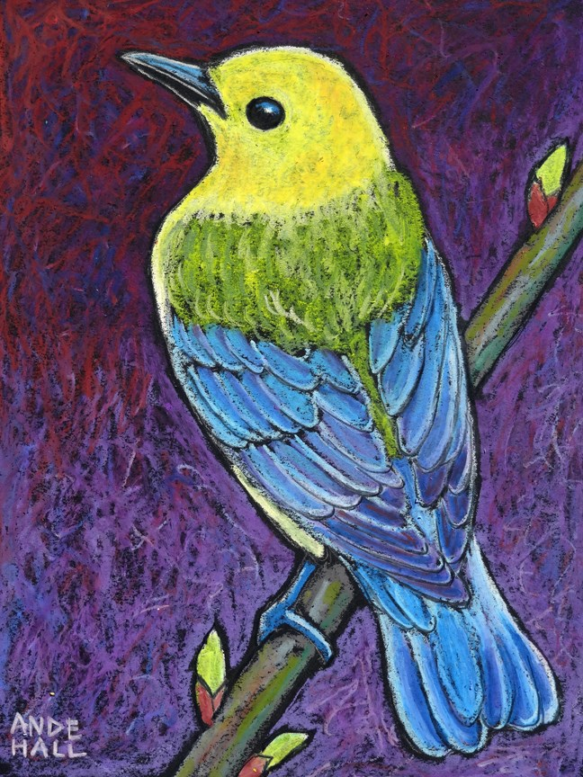 """""""Prothonotary Warbler 3"""" original fine art by Ande Hall"""