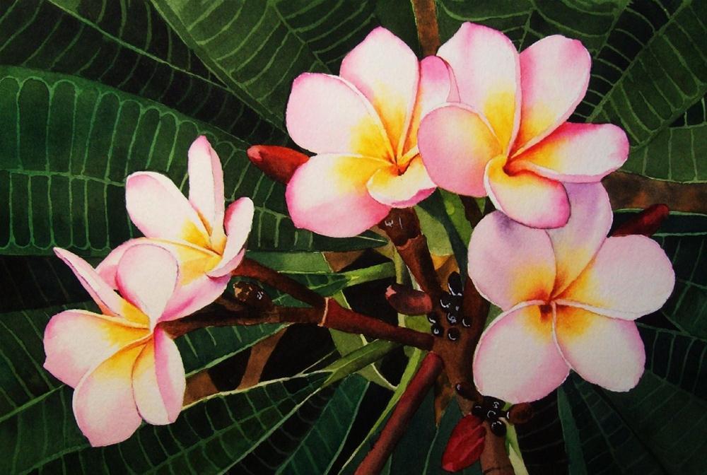 """Plumeria"" original fine art by Jacqueline Gnott, TWSA, WHS"