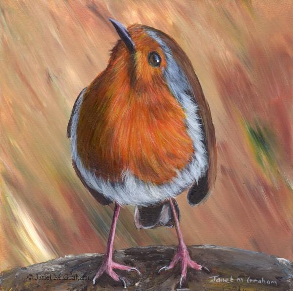 """Robin No 18"" original fine art by Janet Graham"