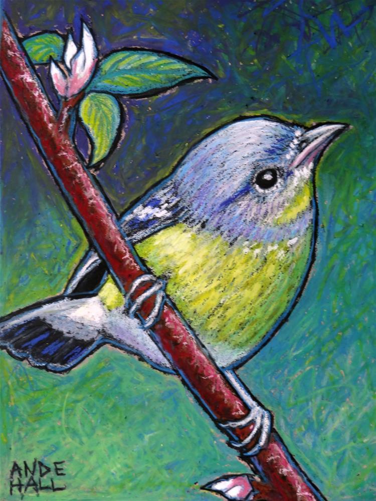 """""""Nashville Warbler 2"""" original fine art by Ande Hall"""