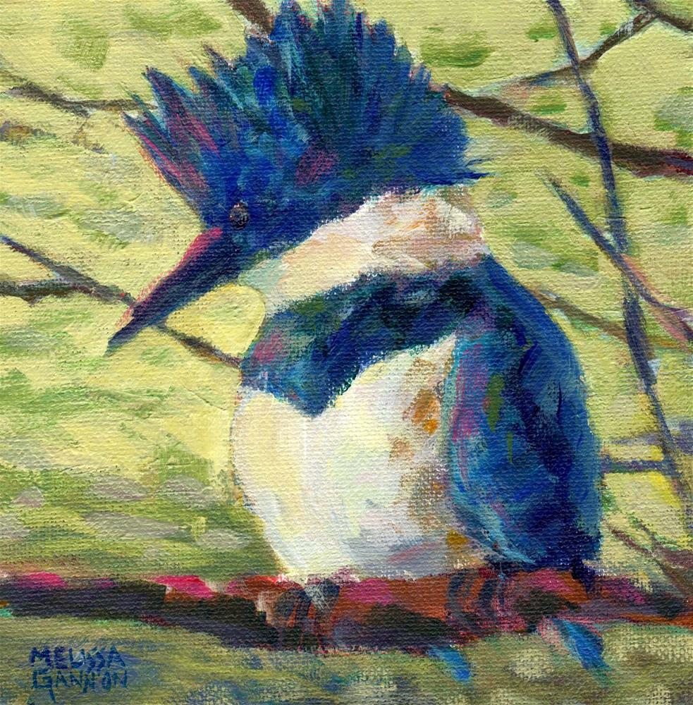 """Kingfisher Pause"" original fine art by Melissa Gannon"