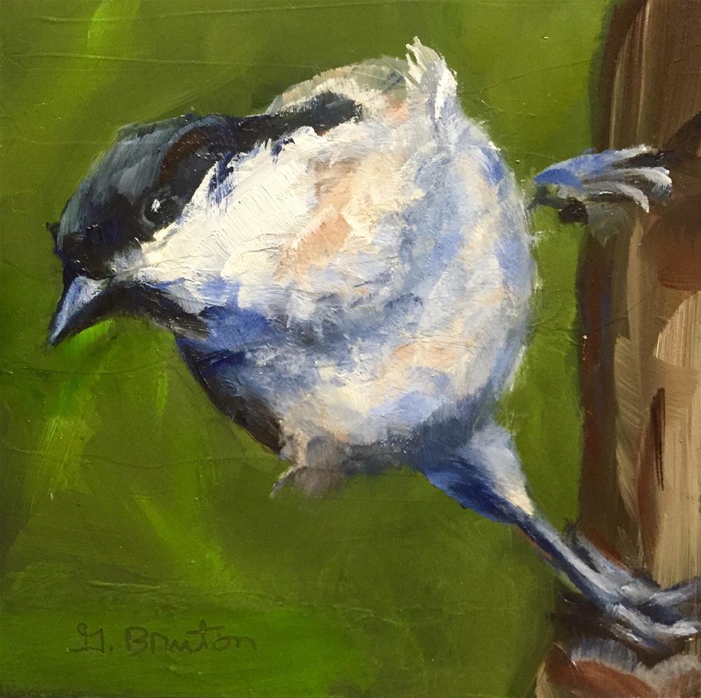 """Marsh Tit"" original fine art by Gary Bruton"