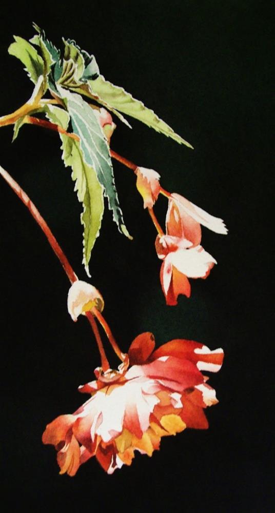 """Trailing Begonia"" original fine art by Jacqueline Gnott, TWSA, WHS"