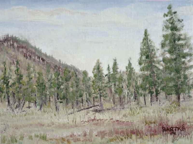 """Flagstaff Afternoon"" original fine art by Janice Bartke Thompson"