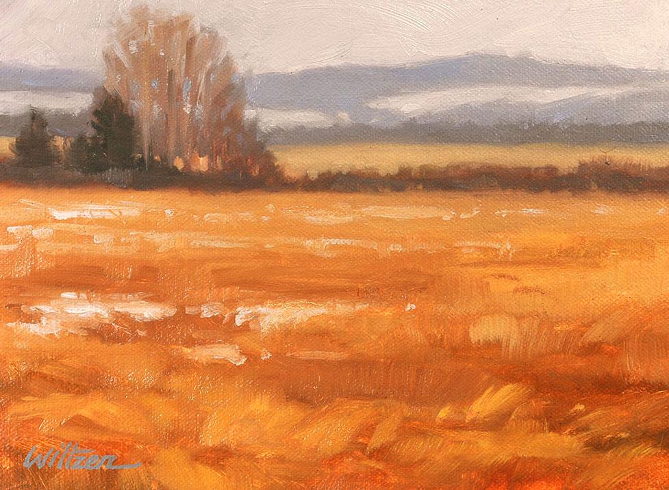 """""""Last Snow of Winter"""" original fine art by Liz Wiltzen"""