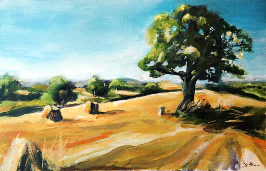 """2600 Model Landscape"" original fine art by Dietmar Stiller"