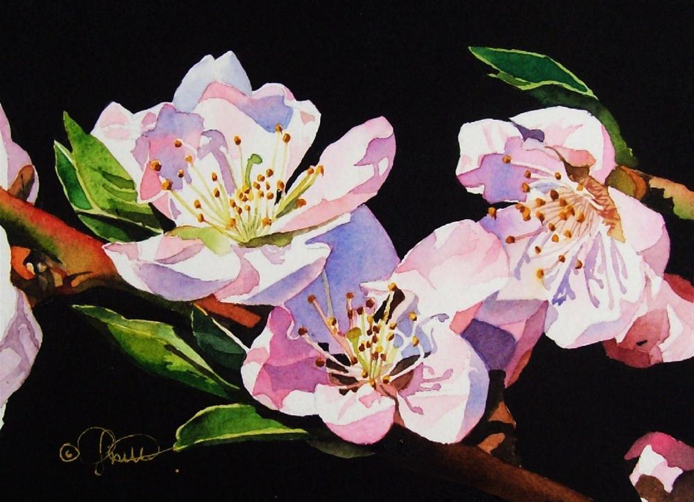 """""""Apple Blossoms"""" original fine art by Jacqueline Gnott, TWSA, WHS"""