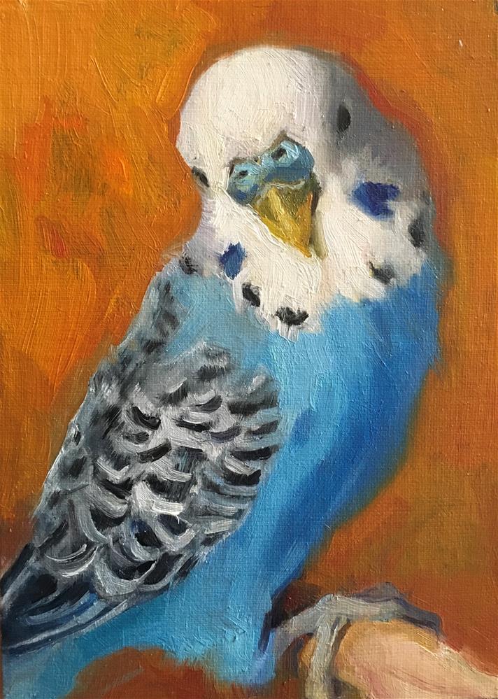 """Budgie72_oil"" original fine art by Katya Minkina"
