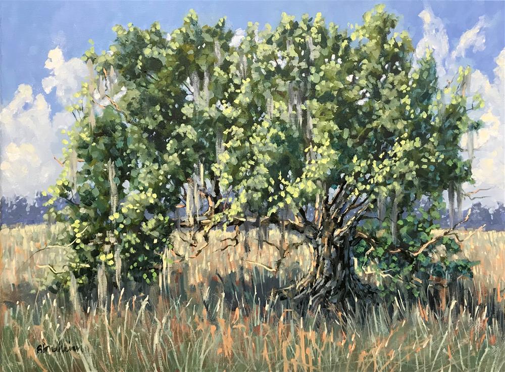 """Richardson Farm Live Oak"" original fine art by Linda Blondheim"