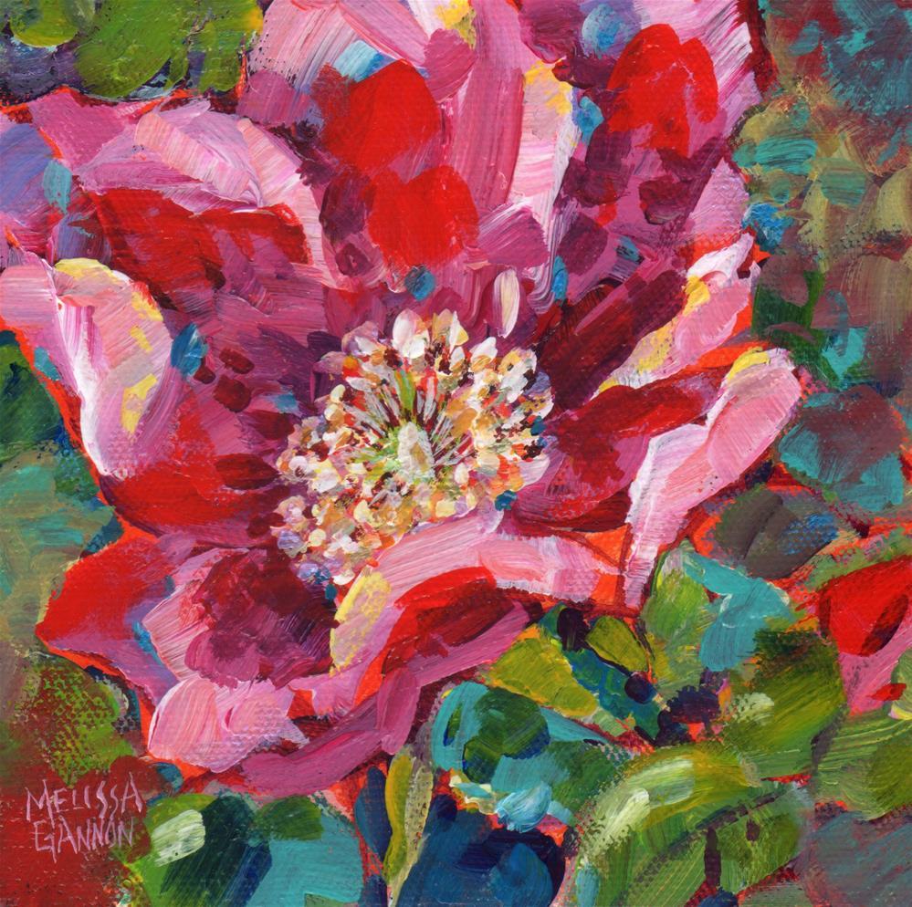 """""""Wild Rose Bloom"""" original fine art by Melissa Gannon"""